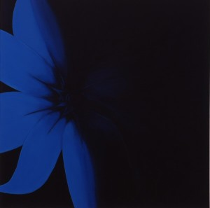 blue-flower-48x48